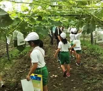 農業をしながら、地域活動にも力を注ぐ。