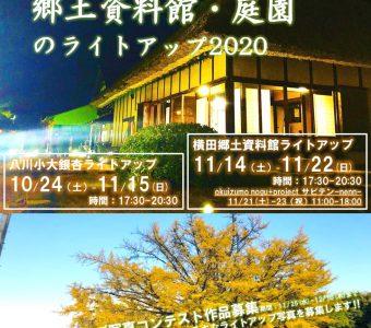 大銀杏と郷土資料館・庭園のライトアップ2020